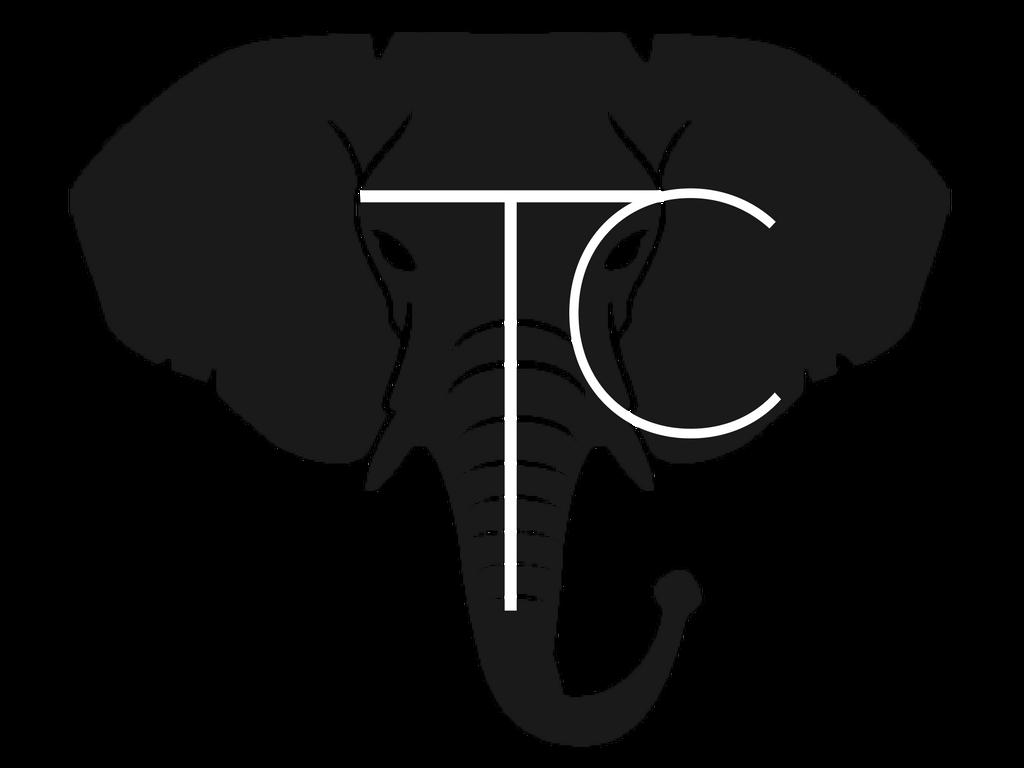Toyin Crandell Coaching